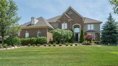 Northville Single Family Home For Sale: 48260 Four Seasons Blvd