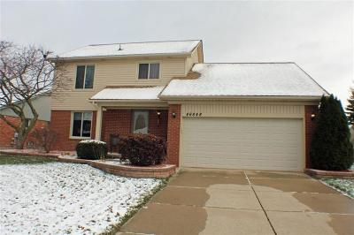 Shelby Twp Single Family Home For Sale: 46848 Amberwood Dr