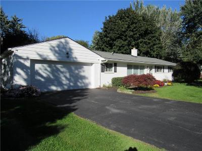 Rochester Single Family Home For Sale: 43 Nesbit Ln