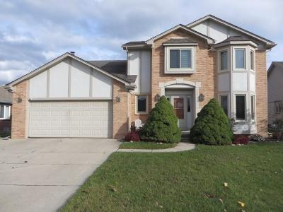 Macomb MI Single Family Home For Sale: $289,900