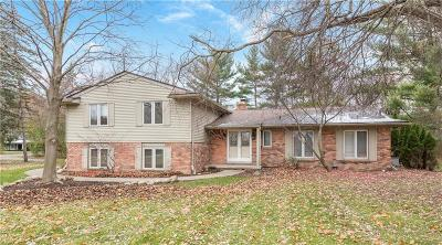 Bloomfield Hills Single Family Home For Sale: 4576 Niagara Ln