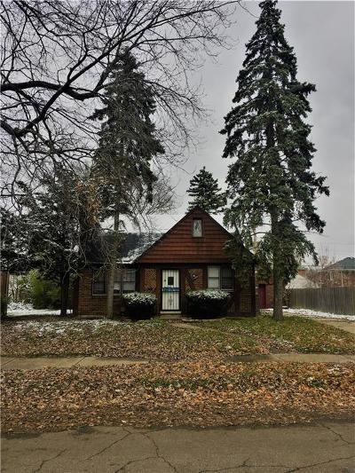 Detroit Single Family Home For Sale: 17400 Plainview Ave