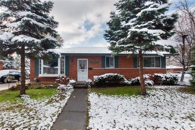 Clinton Township Single Family Home For Sale: 21210 Fleetwood Dr