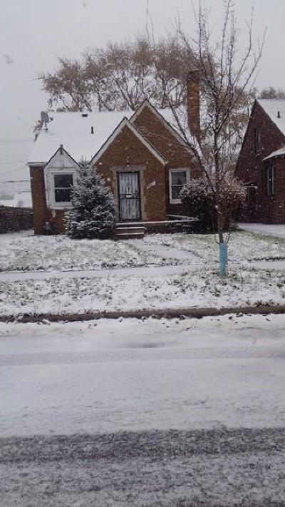 Detroit Single Family Home For Sale: 19200 Freeland St