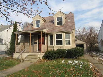 Detroit Single Family Home For Sale: 9550 Evergreen Ave