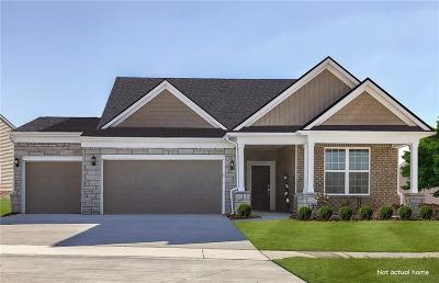 Lake Orion Single Family Home For Sale: 1119 Lark