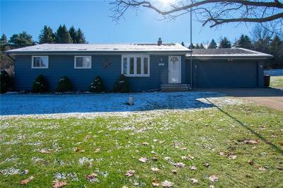 Lake Orion Single Family Home For Sale: 550 S Newman Rd