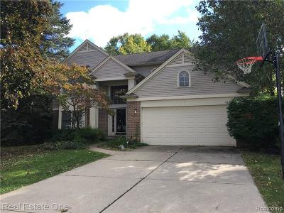 West Bloomfield Single Family Home For Sale: 7320 Willow Oak