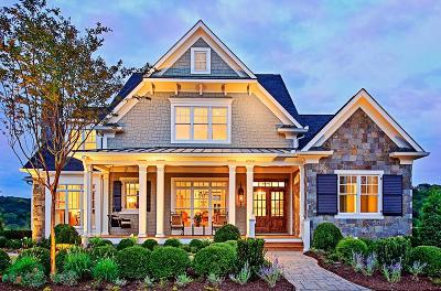 Northville Single Family Home For Sale: 516 Novi St