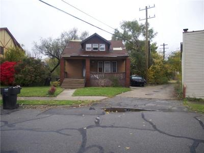 Detroit Single Family Home For Sale: 13024 Ward St