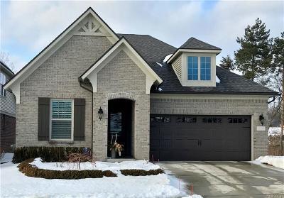 Auburn Hills Single Family Home For Sale: 4024 Vendome Dr