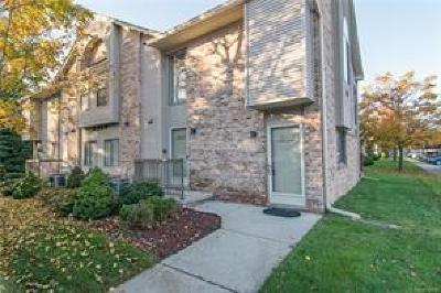 Canton Condo/Townhouse For Sale: 42799 Lilley Pointe Dr
