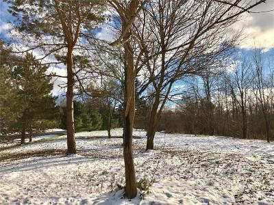 Lapeer Residential Lots & Land For Sale: S Timber Ridge Dr W