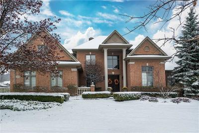 Northville Single Family Home For Sale: 21058 Maybury Park Dr