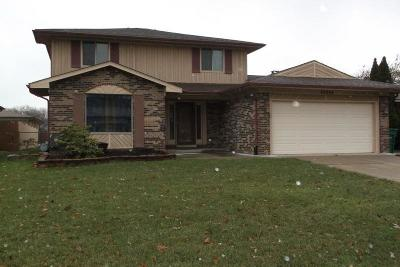 Macomb Single Family Home For Sale: 46594 Peach Grove Ave