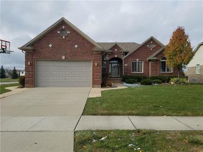 Macomb Single Family Home For Sale: 50387 Cheltenham Dr