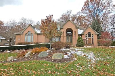 Farmington Hills Single Family Home For Sale: 28759 Wintergreen