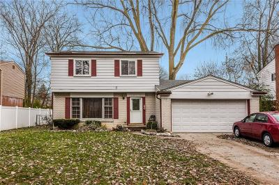 Southfield Single Family Home For Sale: 29714 Somerset Dr