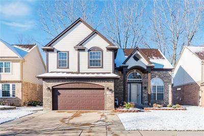Canton Single Family Home For Sale: 39644 Dorchester Cir