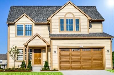 Pontiac Single Family Home For Sale: 234 Tucker St