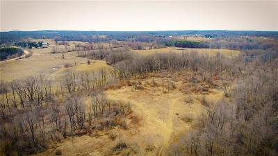 Lapeer Residential Lots & Land For Sale: 163 W High St