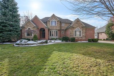 Macomb Single Family Home For Sale: 5744 Brookside Ln