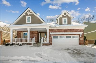 Canton Single Family Home For Sale: 49543 Hancock St