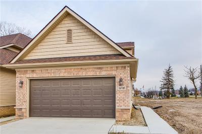 Clinton Township MI Condo/Townhouse For Sale: $239,000