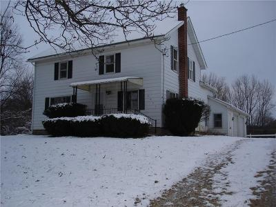 Lapeer Single Family Home For Sale: 4451 Diehl Rd