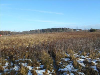 Lapeer Residential Lots & Land For Sale: Piersonville Rd