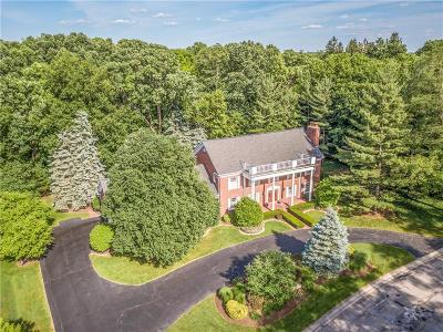 Bloomfield Hills Single Family Home For Sale: 2967 Chestnut Run Dr