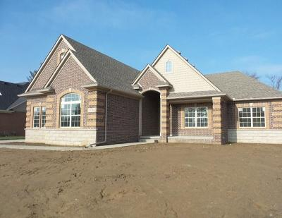 Livonia Single Family Home For Sale: 35354 Milana Dr