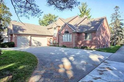 Clinton Township Single Family Home For Sale: 17581 Millar Rd