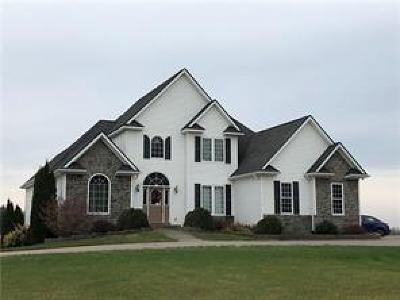 Lapeer Single Family Home For Sale: 1494 Bowers Rd