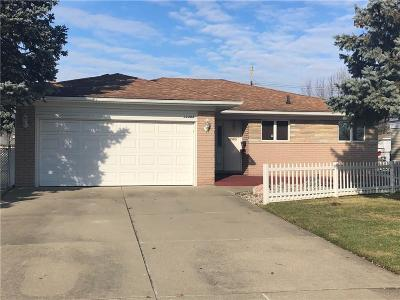 Sterling Heights Single Family Home For Sale: 13303 Cloverlawn Dr