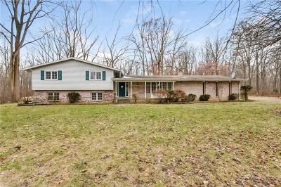 Northville Single Family Home For Sale: 47993 9 Mile Rd
