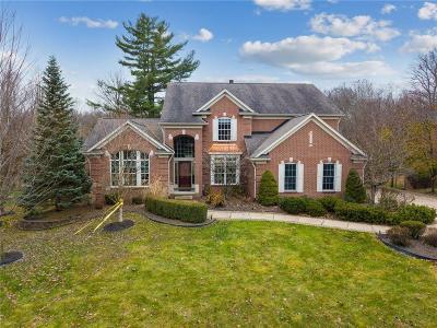 Canton Single Family Home For Sale: 8165 Endicott Ln