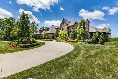 Northville Single Family Home For Sale: 8927 Fran Dor Ln