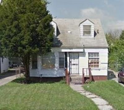Detroit Single Family Home For Sale: 9625 Stahelin Ave