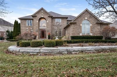 Rochester Single Family Home For Sale: 816 Majestic
