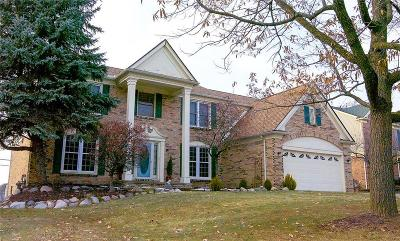 Rochester Hills Single Family Home For Sale: 1731 Hillcrest Dr