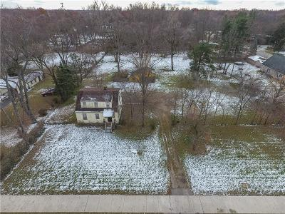 Southfield Single Family Home For Sale: 24245 W 9 Mile Rd