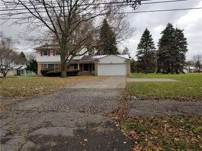 Southfield Single Family Home For Sale: 23731 Civic Center Dr