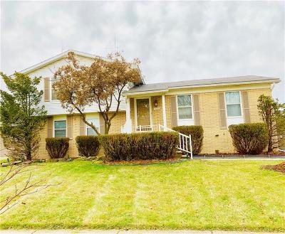 Clinton Township Single Family Home For Sale: 42006 Merrimac Cir S