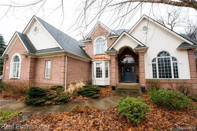 Clarkston Single Family Home For Sale: 9226 Morning Mist Dr E
