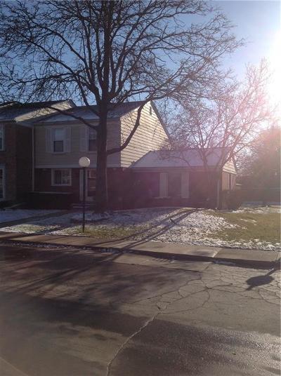 Saint Clair Shores Condo/Townhouse For Sale: 1302 Woodbridge St