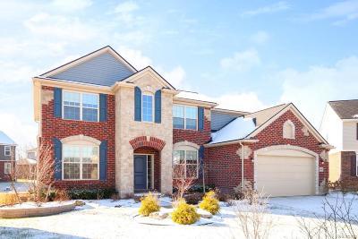 Canton Single Family Home For Sale: 44345 Waynesboro Crt