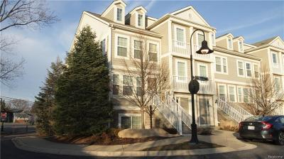 Troy Condo/Townhouse For Sale: 1073 Foxboro