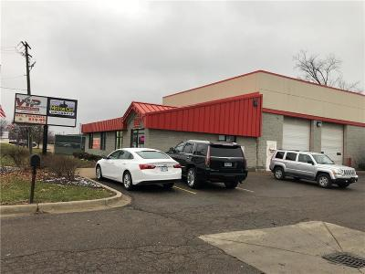 Commercial/Industrial For Sale: 35927 Mound Rd
