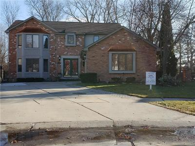 Clinton Township Single Family Home For Sale: 20380 Drummond Bay Crt